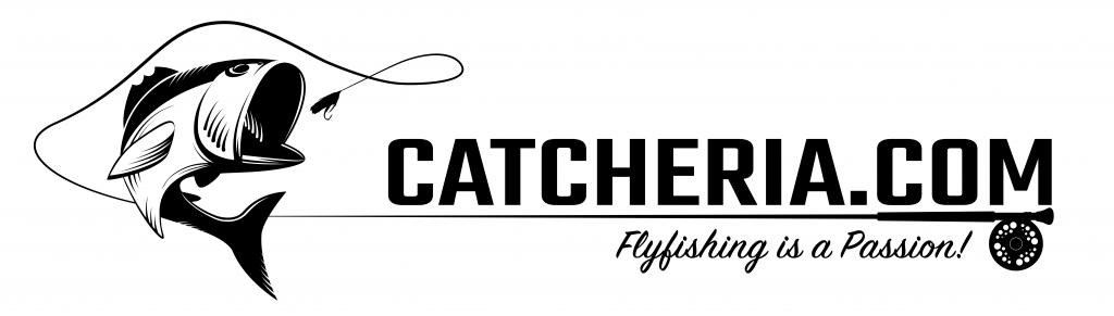 150_Catcheria