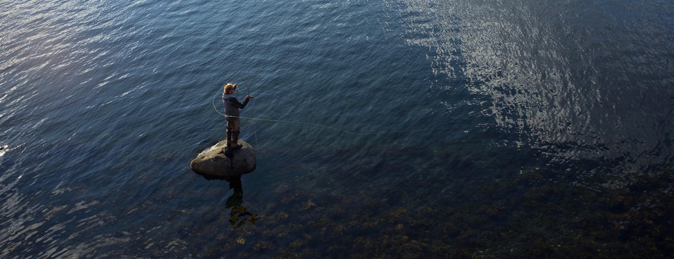 Meerforellen Fliegenfischen in der Ostsee