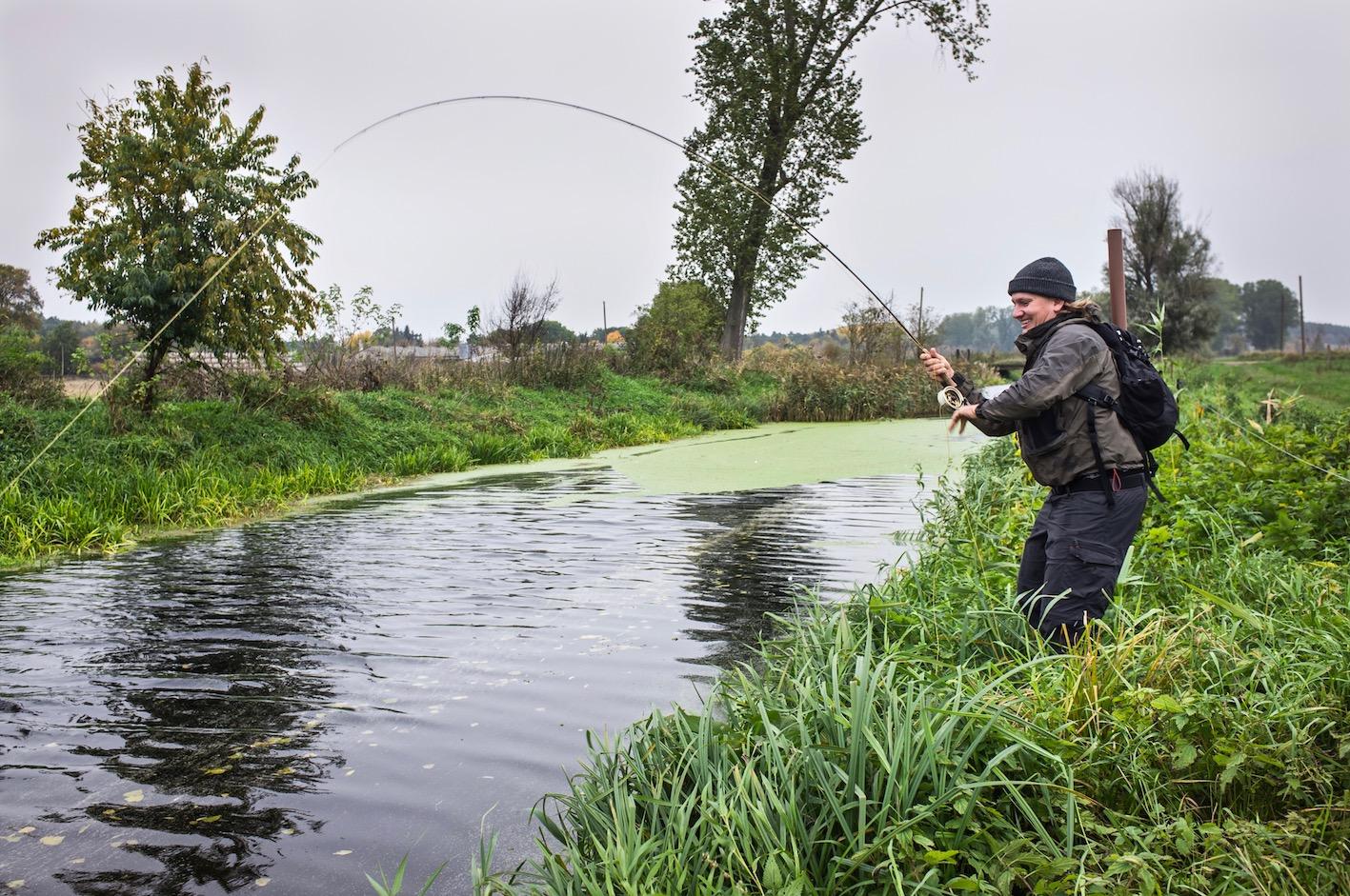 Hecht Fliegenfischen im Kanal