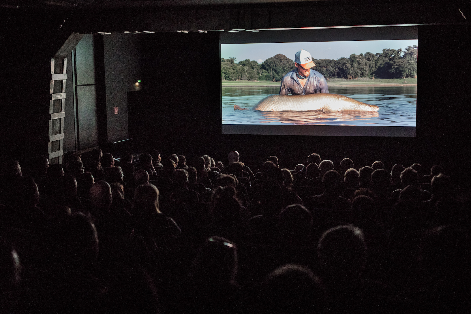 Das RISE Fliegenfischen Filmfestival