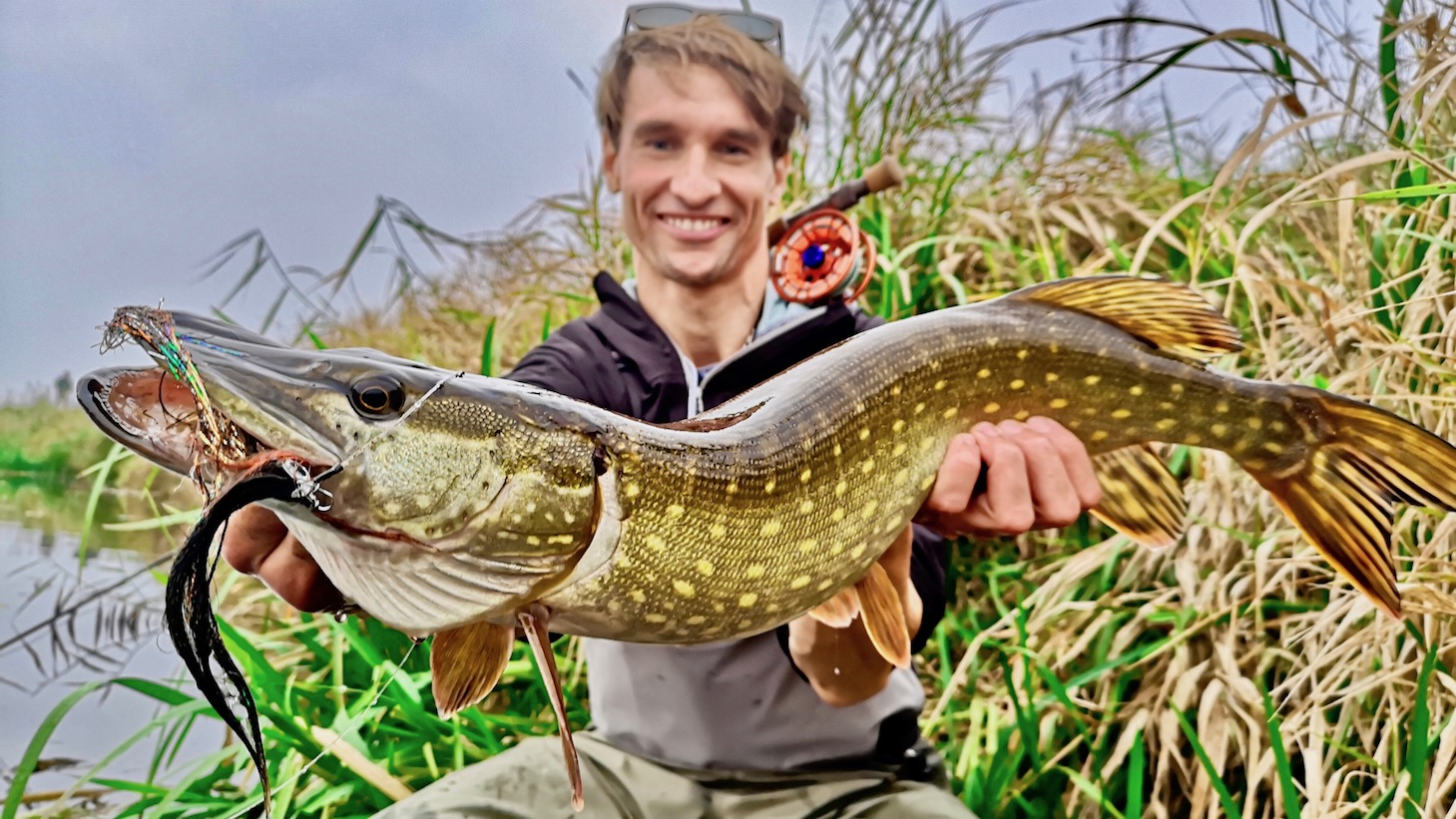 Pike fly fishing in Germany