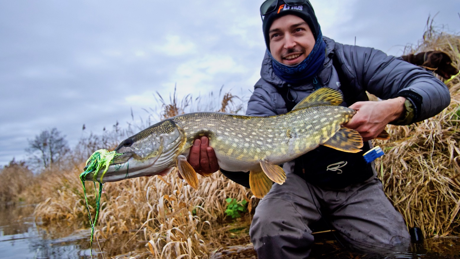 fly fishing Germany, pike