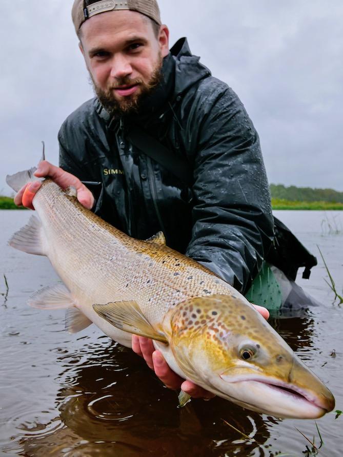 Zweihand Fliegenfischen, Lachs Fliegenfischen Dänemark Skjern Au