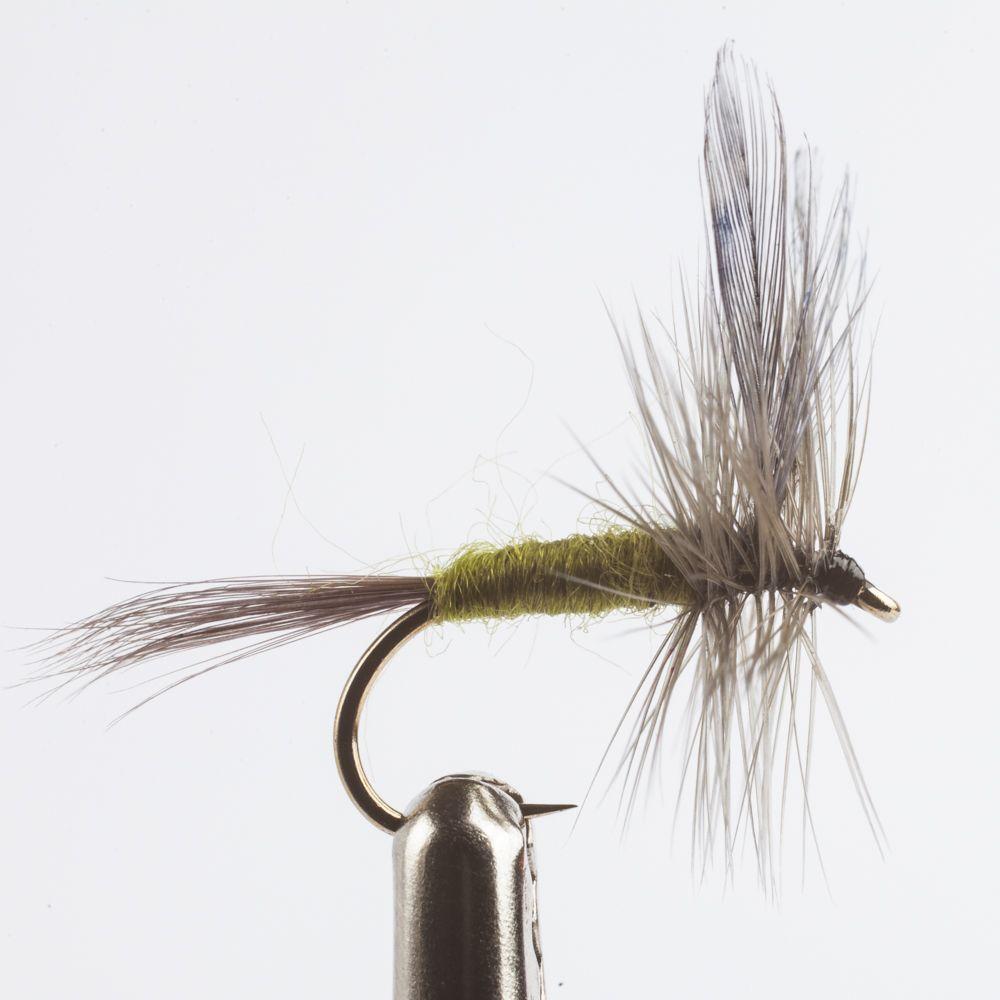 Trockenfliege